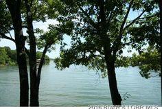 80 Tree Loft Cir # 65, Four Seasons, MO 65049 | MLS #3115829 - Zillow