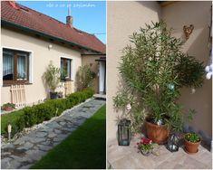 Vše o co se zajímám: Květena a popis Outdoor Decor, Plants, Home Decor, Decoration Home, Room Decor, Plant, Home Interior Design, Planets, Home Decoration