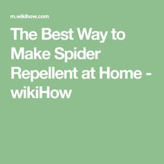 The Best Way to Make Spider Repellent at Home - wikiHow