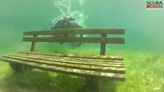 Green Lake, Tragoess, Austria: The park that disappears under water every year | Mail Online
