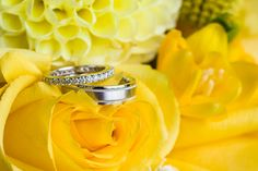 Have your rings photographed in the bouquet. Bonnie + Sunny = Happy Wedding at the Falkirk Estate » Fucci's Photos of Boston | Boston Wedding Photographer