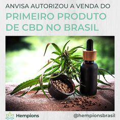 CBD is the acronym for cannabidiol. It is a component of hemp and cannabis that does not possess the intoxicating and addictive effects of tetrahydrocannabinol& The post Sleeplessness: CBD against Insomnia appeared first on Wild Chronicle. Marijuana Plants, Cannabis Plant, Cannabis News, Chronischer Stress, Neuropathic Pain, Gras, Hemp Seeds, Hemp Oil, Medical Marijuana