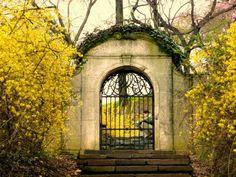 Dumbarton Oaks secret gate