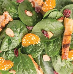 Use your favorite gingery salad dressing on this Mandarin Chicken Salad. It's perfect for lunch.