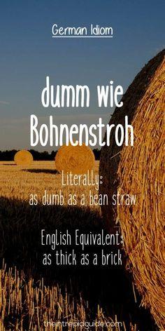 German Idiom: dumm wie Bohnenstroh = as dumb as a bean straw Learn German, Learn French, Learn English, Cool German Words, German Resources, Deutsch Language, Germany Language, Teaching French, Learning