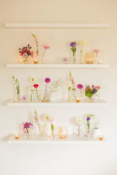Floral shelves - Garden Party by All the Frills (Bottle Display Flower Arrangements)