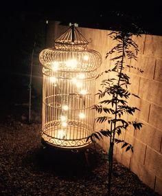 Backyard birdcage lighting feature
