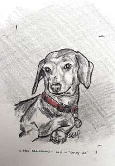 2011 - Dog in a Red Collar (Dolly Jo)