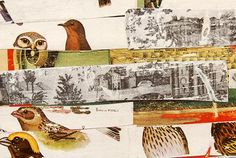 Love this print - Birdpaper by Matthew Rose