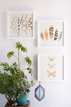 Sarah B. Martinez Butterflies #5 Framed Art