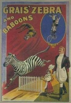 Grais Zebra and Baboons - Limited Edition Hand Pulled Original Lithograph on Paper by the RE Society Vintage Circus Posters, Retro Poster, Vintage Carnival, Poster Vintage, Maurice Careme, Art Du Cirque, Circo Vintage, Circus Art, Circus Room