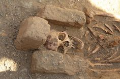 """Four cemeteries unearthed at Medieval Monastery in Sudan -- The skeletons found in """"cemetery two"""" at al-Ghazali in Sudan were all males, suggesting monks who lived in the nearby Christian monastery were buried there Researchers have excavated four ancient cemeteries in Sudan and revealed that many of the skeletons had signs of 'defleshing'. Marks on the skeletons' bones suggest that their flesh was removed shortly after death – although the reason for this remains a mystery."""