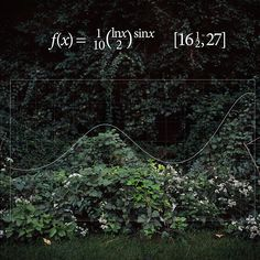 Arts: Photographer Loves Math, Graphs Her Images | Wired Magazine | Wired.com