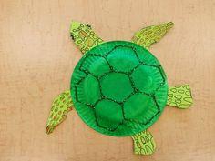 turtle crafts and activities for  preschool