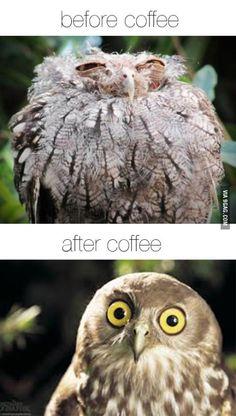9GAG - The magic of coffee