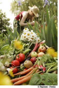 La vitamine A : à quoi sert-elle, et où la trouve-t-on ? - Bien Manger, Bien Vivre - Destination Santé
