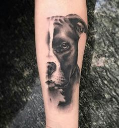 By : Jules Blomen. - By : Jules Blomen… - tattoos Tattoo Pitbull, Bull Tattoos, Animal Tattoos, Body Art Tattoos, Dog Portrait Tattoo, Dog Memorial Tattoos, Desenho Tattoo, Sleeve Tattoos For Women, Ankle Tattoo