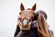 horse photography Horse gives equestrian a hug during equine photography shoot in Saratoga Springs NY Cute Horse Pictures, Horse Senior Pictures, Horse Photos, Senior Photos, Horse Girl Photography, Equine Photography, Animal Photography, Photography Poses, Country Girl Photography