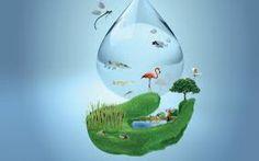 #VidaVerde Tips para cuidar el agua http://www.tuzonavital.com/tips-para-cuidar-agua/