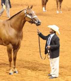 Knowing your halter horses faults will help position him in the best possible way for the judge