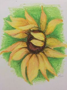 Sunflower (oil pastel on sketchpad)