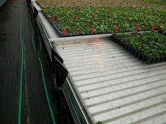 Ebb and Flow Table Greenhouse Benches, Flow, Sidewalk, Deck, Stairs, Outdoor Decor, Table, Ladders, Ladder