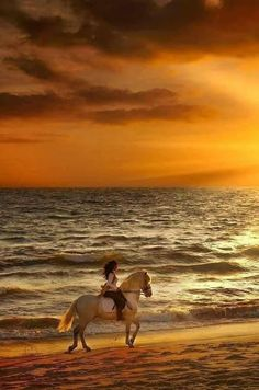 Horse and rider running on the beach at sunset. This Board Sponsored by: www.LaborofFaith.org