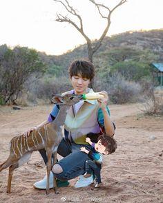 Cute Korean Boys, Star Wars Comics, Flower Boys, Idole, My Idol, Laos, Giraffe, Chibi, Thing 1