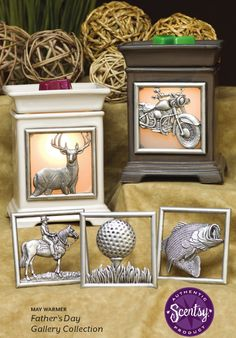 (Available May 1) May 2013 Warmer of the Month~ GREAT Dad or hubby gift! YOU choose the decorative plate on the front.  Purchase online