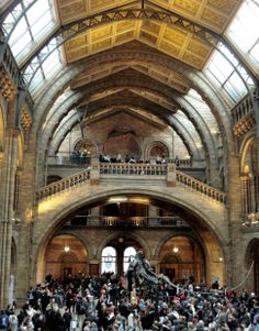 19TH CENTURY, Neo-Romanesque, England -  Natural History Museum, London, 1873–1881, Designed by Alfred Waterhouse.