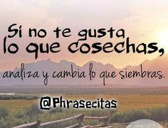 (9) ღ Frases en fotos ღ (@Phrasecitas) | Twitter