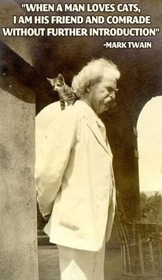 Mark Twain Quotes  PurritoCat