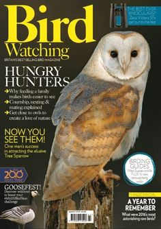 In this issue:  Hungry hunters <ul>  <li>Why feeding a family makes birds easier to see</li>  <li>Courtship, nesting & mating explained</li>  <li>get close to owls to create a love of nature</li> </ul> Now you see them! One man's success in attracting the elusive Tree Sparrow  Goosefest! Discover wildfowl to boost your #My200Birdchallenge  A year to remember - what were 2016's most astonishing rare birds?  The best ever binoculars? Put to the test