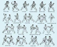Advice that can help you Greatly improve Your own knowledge of martial arts tutorials Kyokushin Karate, Shotokan Karate, Karate Kata, Karate Do, Karate Training, Kung Fu, Kick Boxing, Aikido, Kendo