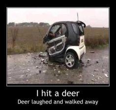Funny car crash I hit a deer Funny Dirty Adult Jokes Memes Car Jokes, Funny Car Memes, Car Humor, Funny Humor, Funny Logic, Ford Memes, Truck Memes, Hilarious Jokes, Haha