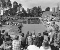 Veel publieke belangstelling voor het fierljeppen te Winsum (40192)