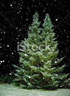 Snowfall at night Royalty Free Stock Photo