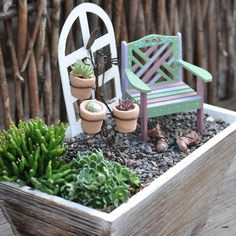 """""""Miniature""""... miniature gardens. You don't need to make a big display... a simple container with a couple plants and accessories can add interest to any space."""