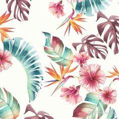 Tropical pattern   Tropical print