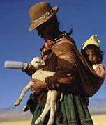 www.villsethnoatlas.wordpress.com (Ajmarowie, Aymara) woman with baby and baby llama
