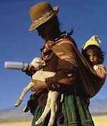 www.villsethnoatlas.wordpress.com (Ajmarowie, Aymara) woman with baby and baby llama