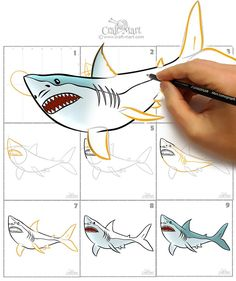 shark draw easy step drawings sharks steps learn mart craft drawing realistic