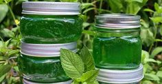 Making mint jam is a fairly simple jam. Making mint jam is a fairly simple jam. Sangria Recipes, Jam Recipes, Easy Cake Recipes, Best Mojito Recipe Ever, Yummy Drinks, Delicious Desserts, Nutella, Paloma Recipe, Rosemary Simple Syrup