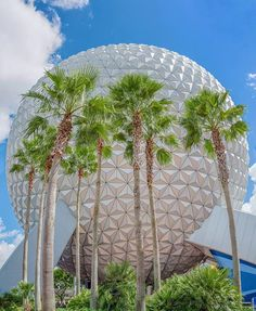 After 30,000 years of time travel, here we are, a truly global community, poised to shape the future of this, our Spaceship Earth - Judy Dench 🇬🇧 #270days #SpaceshipEarthSunday