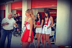 Όμορφες παρουσίες στο Πανελλήνιο Πρωτάθλημα Ταχύτητας Μοτοσυκλέτας (18 photos) Ducati, Sports, Tops, Fashion, Hs Sports, Moda, Fashion Styles, Sport, Fashion Illustrations