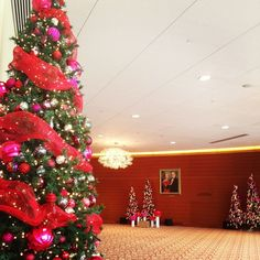 The wold is decorated for the holidays! Do you have a favorite spot on campus?