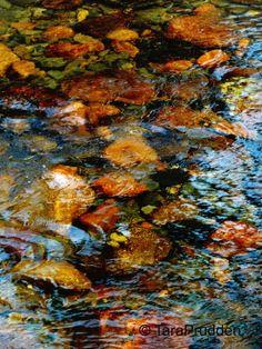 Dartmoor (2014) Fujifilm Finepix S6800