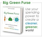 Books we recommend: Big Green Purse by Diane MacEachern Green Purse . Essay Contests, Green Purse, Green Books, Best Blogs, Fun Blogs, New Green, Writing Help, Save Energy, How To Find Out