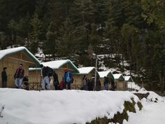 #8. Camp Mashoobra Greens – Experience the high Best time to visit: March to June Accommodation: Bamboo cottages Attractions: Picnics lunches in forest, meadows or orchards.