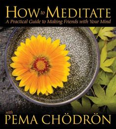 Introduces a complete course for those new to meditation, helping listeners honestly meet and compassionately relate with the mind--the fundamental skill in meditations--as they explore the basics of